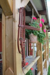 Hand Tooled Browband Headstall with Navajo Border and Spots