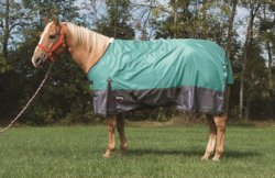 Weaver 600D Premium Waterproof Turnout Blanket